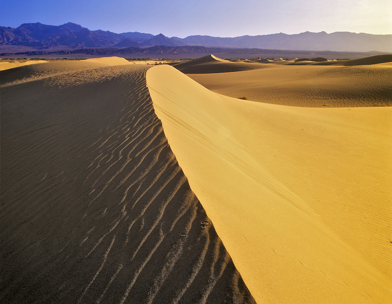 Knife edged sand dune showing ripple pattern. Death Valley National Park, California