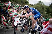 Tim Declercq (BEL/Deceuninck - Quick Step) up the brutal (last climb) Alto de Arraiz (up to 25% gradients!), 7km from the finish <br /> <br /> Stage 12: Circuito de Navarra to Bilbao (171km)<br /> La Vuelta 2019<br /> <br /> ©kramon