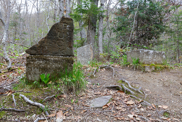 Pet cemetery along the Saco Lake Trail in Carroll, New Hampshire.