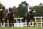 03.09.2011 The Matron Stakes from Leopardstown. .The D K (Dermot) Weld trained Emulous with jockey Pat (P J) Smullen aboard win the Coolmore Fusaichi Pegasus Matron Stakes