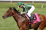 April 18, 2014: Red Vine and Joel Rosario win the 7th race at Keeneland Racecourse for owner Sarah and Jon Kelly and trainer Christophe Clement.  Candice Chavez/ESW/CSM