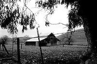 Barn near Tassajara, 1987.  &#xA;<br />