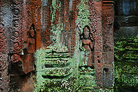 The green algae in Phreah Khan is a microbial biofilms have been found degrading sandstone at Angkor Wat, Preah Khan, and the Bayon and West Prasat in Angkor. The dehydration and radiation resistant filamentous cyanobacteria can produce organic acids that degrade the stone. A dark filamentous fungus was found in internal and external Preah Khan samples, while the alga Trentepohlia was found only in samples taken from external, pink-stained stone at Preah Khan.<br />