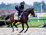 October 2, 2020: Thousand Words exercises as horses prepare for the Preakness Stakes at Pimlico Race Course in Baltimore, Maryland. Scott Serio/Eclipse Sportswire/CSM