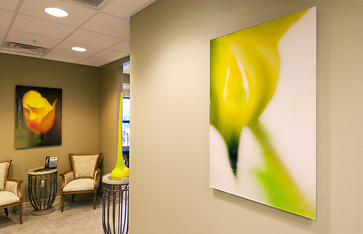 Prints face-mounted onto acrylic at a real estate office in Henderson, Nevada.