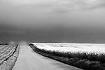 Europa, DEU, Deutschland, Nordrhein Westfalen, NRW, Rheinland, Niederrhein, Juechen, Agrarlandschaft, Bluehende Rapsfelder, Raps, Fruehling, Wolken, Gewitterwolke, Wetterfront, Weg, Strasse, Kategorien und Themen, Landwirtschaft, Landwirtschaftlich, Agrar, Agrarwirtschaft, Natur, Naturfoto, Naturfotos, Naturfotografie, Naturphoto, Naturphotographie, Landschaft, Landschaften, Landschaftsfoto, Landschaftsfotografie, Landschaftsphoto, Landschaftsphotographie<br /> <br /> <br /> [Fuer die Nutzung gelten die jeweils gueltigen Allgemeinen Liefer-und Geschaeftsbedingungen. Nutzung nur gegen Verwendungsmeldung und Nachweis. Download der AGB unter http://www.image-box.com oder werden auf Anfrage zugesendet. Freigabe ist vorher erforderlich. Jede Nutzung des Fotos ist honorarpflichtig gemaess derzeit gueltiger MFM Liste - Kontakt, Uwe Schmid-Fotografie, Duisburg, Tel. (+49).2065.677997, schmid.uwe@onlinehome.de, www.image-box.com]