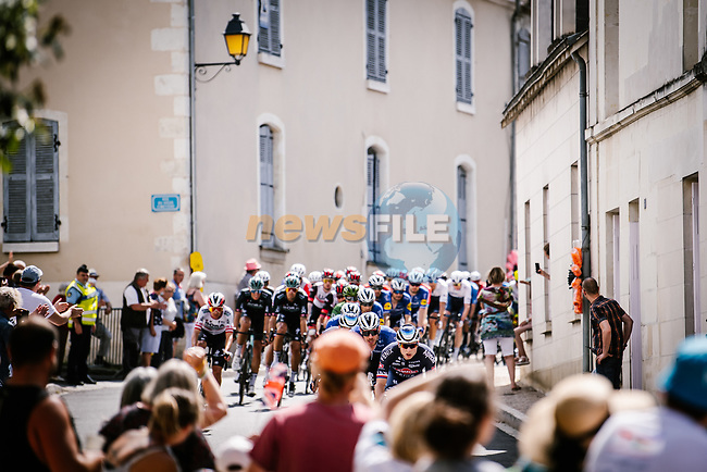 The peloton led by Alpecin-Fenix during Stage 6 of the 2021 Tour de France, running 160.6km from Tours to Chateauroux, France. 1st July 2021.  <br /> Picture: A.S.O./Pauline Ballet | Cyclefile<br /> <br /> All photos usage must carry mandatory copyright credit (© Cyclefile | A.S.O./Pauline Ballet)