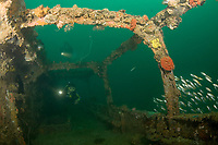 divers explore the wreck known as the Japanese Patrol Boat, a 32 m long trawler-style WW II Japanese vessel, possibly a tugboat or submarine chaser, sunk upright in 18-25m of water in Triboa Bay, within Subic Bay, Philippines, presumed to have been sunk by an Allied air attack in 1944-1945