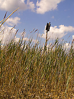 Sign above tall grasses<br />
