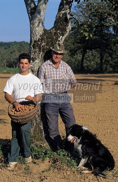 Europe/France/Midi-Pyrénées/46/Lot/Thégra: Jean et Thierry Chartroux et leur chien Justin ramassent leurs noix du Quercy [Non destiné à un usage publicitaire - Not intended for an advertising use]<br /> PHOTO D'ARCHIVES // ARCHIVAL IMAGES<br /> FRANCE 1990