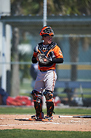 Baltimore Orioles catcher Chris O'Brien (81) during a minor league Spring Training game against the Boston Red Sox on March 16, 2017 at the Buck O'Neil Baseball Complex in Sarasota, Florida.  (Mike Janes/Four Seam Images)