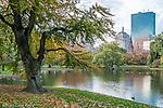 Autumn in the Boston Public Garden, Boston, Massachusetts, USA