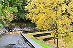 Fall color and rain highlight a terraced park an Auburn, WA city park.