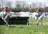 Swagger Stick competes in Budweiser Imperial Cup at Aiken, S.C., 3/20/2010.