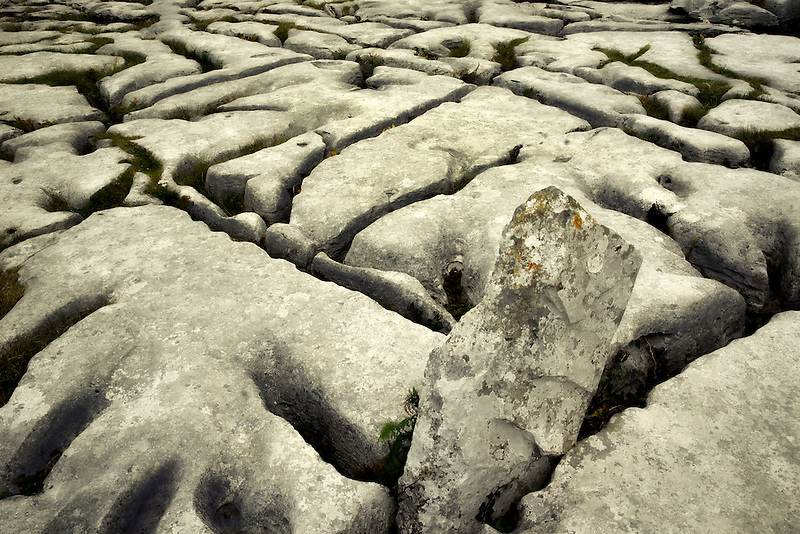 Karst rock formation near the Megalithic tomb called Poulnabrone. The Burren, Ireland