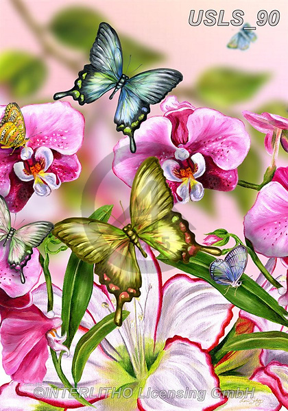 Lori, REALISTIC ANIMALS, REALISTISCHE TIERE, ANIMALES REALISTICOS, zeich, paintings+++++2-ButterfliesandPinkOrchids,USLS90,#a#, EVERYDAY ,puzzle,puzzles