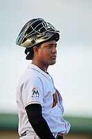 Jupiter Hammerheads catcher Luis Arcaya (14) during a game against the Palm Beach Cardinals on August 4, 2018 at Roger Dean Chevrolet Stadium in Jupiter, Florida.  Palm Beach defeated Jupiter 7-6.  (Mike Janes/Four Seam Images)