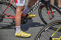 Cyclist legs.<br /> <br /> Stage 1: Noirmoutier-en-l'Île > Fontenay-le-Comte (189km)<br /> <br /> Le Grand Départ 2018<br /> 105th Tour de France 2018<br /> ©kramon