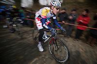 Ronde van Vlaanderen 2013..Tosh Van der Sande (BEL) leading up the Taaienberg
