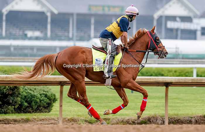 April 25, 2021: O Besos, trained by trainer Greg Foley, exercises in preparation for the Kentucky Derby at Churchill Downs on April 25, 2021 in Louisville, Kentucky. Scott Serio/Eclipse Sportswire/CSM