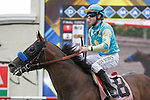 Jaycito winning a 2 yr. old Maiden race at Del Mar Race Course in Del Mar, California on July 22, 2012.