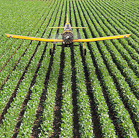 Crop Duster Aircraft spraying crops with aerial application
