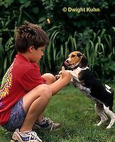 SH24-033z Beagle Puppy with child, PRA
