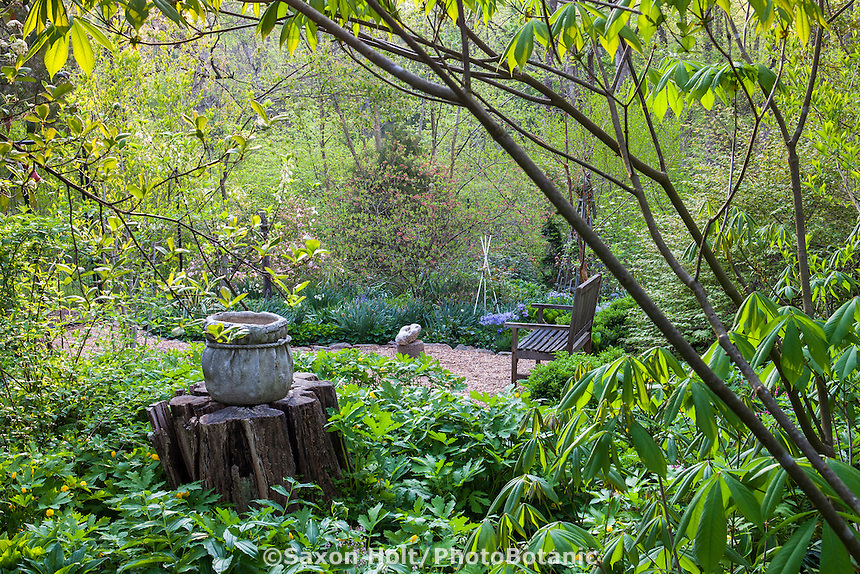 Gravel path to private bench in spring woodland secret garden, Boninti Garden, Virginia