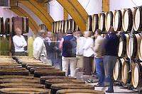 barrel aging cellar people delas freres tournon-s-r rhone france