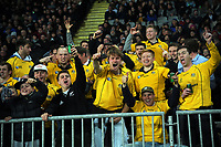 Australia fans celebrate during the Bledisloe Cup rugby match between the New Zealand All Blacks and Australia Wallabies at Eden Park in Auckland, New Zealand on Saturday, 7 August 2021. Photo: Dave Lintott / lintottphoto.co.nz
