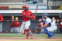Sanel Rosendo (19) of the Johnson City Cardinals follows through on his swing against the Burlington Royals at Burlington Athletic Stadium on July 15, 2018 in Burlington, North Carolina. The Cardinals defeated the Royals 7-6.  (Brian Westerholt/Four Seam Images)