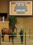 LEXINGTON, KY - September 12: Hip # 120 War Front - Value Stream Filly consigned by Timber Town sold for $600,000 at the September Yearling sale at Keeneland.  September 12, 2016 in Lexington, KY (Photo by Candice Chavez/Eclipse Sportswire/Getty Images)