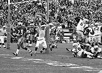 Leo Lewis Winnipeg Blue Bombers scores touchdown during the 1965 Grey Cup. Copyright photograph Ted Grant