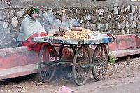 India, Rishikesh.  Woman Selling Roasted Peanuts.