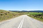 Road in Central Tasmania, heading to Hertiage Highway. AUstralia