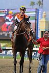 Ponchatrain with Gary Stevens aboard wins the Grade II Buena Vista Stakes at Santa Anita Park in Arcadia, California on February 17, 2014. (Zoe Metz/ Eclipse Sportswire)