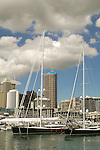 Auckland Skyline, America's Cup Marina.