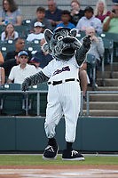 Somerset Patriots mascot Sparky prior to the game against the Altoona Curve at TD Bank Ballpark on July 24, 2021, in Somerset NJ. (Brian Westerholt/Four Seam Images)
