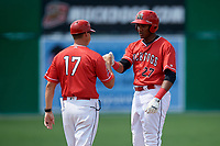 Batavia Muckdogs manager Mike Jacobs (17) fist bumps Jerar Encarnacion (27) after hitting a triple during a game against the Lowell Spinners on July 15, 2018 at Dwyer Stadium in Batavia, New York.  Lowell defeated Batavia 6-2.  (Mike Janes/Four Seam Images)