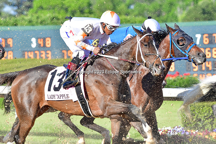 April 18, 2020: Lady Apple (13) with jockey Ricardo Santana, Jr. aboard during the Apple Blossom Handicap at Oaklawn Racing Casino Resort in Hot Springs, Arkansas on April 18, 2020. Ted McClenning/Eclipse Sportswire/CSM