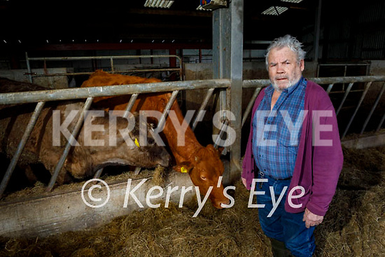 Timothy Kelliher a Killorglin farmer who believes the beef industry is suffering due to cost of meat due to the unregulated meat industry