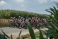 peloton making this longest 2018 Tour stage a relatively slow one...<br /> <br /> Stage 7: Fougères > Chartres (231km)<br /> <br /> 105th Tour de France 2018<br /> ©kramon