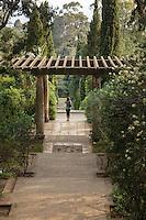 Le Domaine du Rayol:<br /> depuis le jardin d'Australie, vu sur la pergola et le grand escalier.