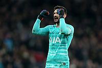 Hugo Lloris of Tottenham Hotspur celebrates the victory after Tottenham Hotspur vs Southampton, Emirates FA Cup Football at Tottenham Hotspur Stadium on 5th February 2020