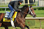 Stay Thirsty on the Churchill Downs track April 30, 2011 for a morning work.