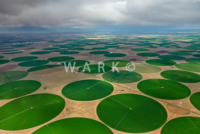 Crop circles, San Luis Valley, Colorado. June 2013