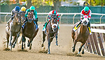 September 26th, 2020: The Grade 2 Vosburgh was won by #5 Firenze Fire with Jose Lezano in the irons.  Lezcano made a late move to earn a spot in the BC sprint for trainer Kelly Breen.  The race was at Belmont Race Track in Elmont, New York. Heary/Eclipse Sportswire/CSM