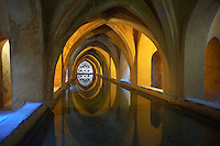 The Baths of Dona Maria de Padill, part of the original Almohad garden that is now below the Alcazar, Alcazar of Seville, Spain.