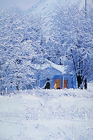 winter scenic showing house with light on in window surrounded by snow at dusk. Mt. Shasta California.