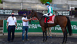 September 26, 2020: Viadera, ridden by Joel Rosario, wins the 2020 running of the G3 Noble Damsel S. at Belmont Park in Elmont, NY. Dan Heary/ESW/CSM